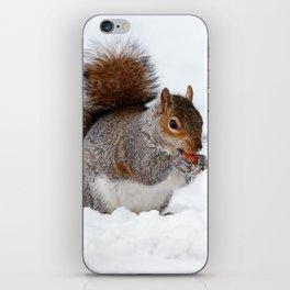 Squirrel in snow iPhone Skin