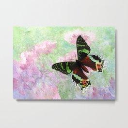 Urania Ripheus Butterfly Metal Print