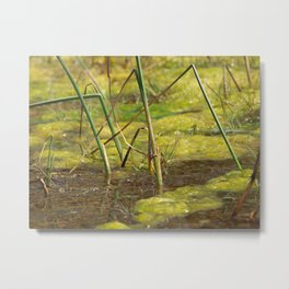 Gooey Green Field Metal Print