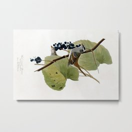 White-crowned Sparrow Metal Print