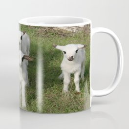 Ewe and Three Lambs Making Eye Contact Coffee Mug