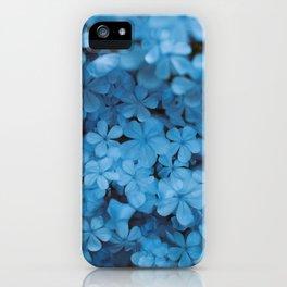 Jazmin del Cielo iPhone Case