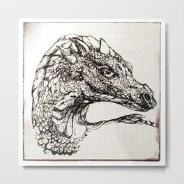 Imagine Dragon Metal Print