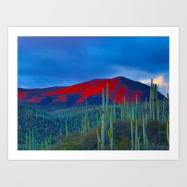 Green Cactus Field In The Desert With Red Mountains Blue Grey Sky Landscape Photography Art Print