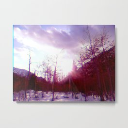 Forest Noise Metal Print