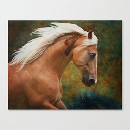 Wind Charger Canvas Print