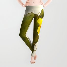 Blossoming Prickly Pear cactus Leggings
