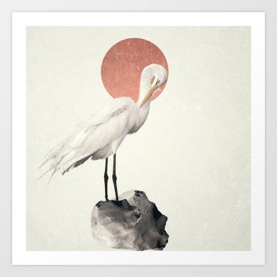 White Wings Art Print