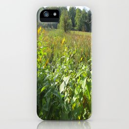 Harvard Arboretum iPhone Case