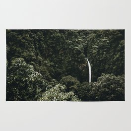 waterfall ii / costa rica Rug
