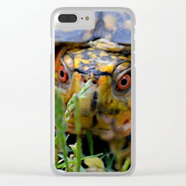 box turtle, face on Clear iPhone Case