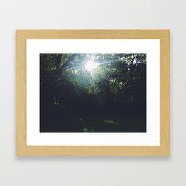 The Backyard Framed Art Print