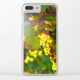 Wine Grapes in the Sun Clear iPhone Case