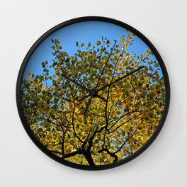 Tulip Tree in the Autumn Wall Clock