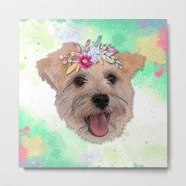 Snauzer Flower Dog Metal Print