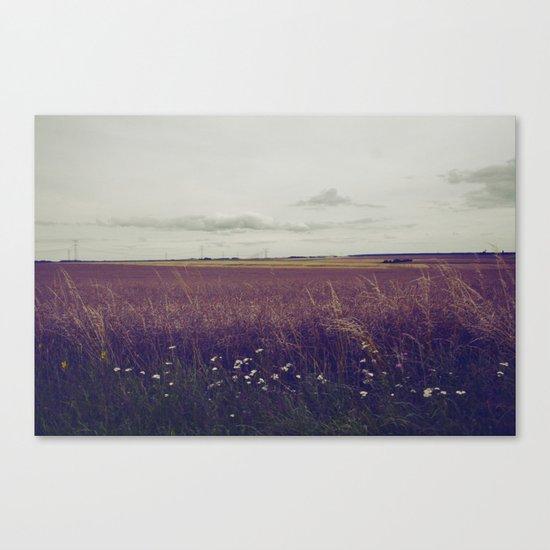 Autumn Field III Canvas Print