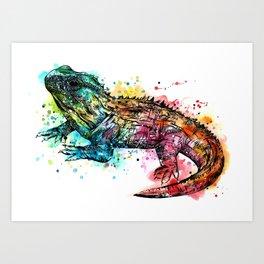Colourful Tuatara Art Print