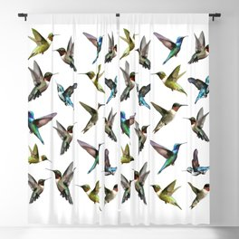 hummingbird pattern 2 Blackout Curtain