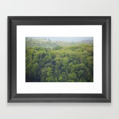 Flying Above the Tree Tops - Spring Trees  Framed Art Print