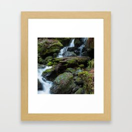 Separate But One Framed Art Print