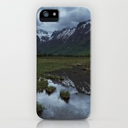 Snow and Green iPhone Case