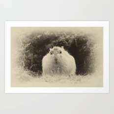 MOUNTAIN HARE Art Print