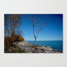 So Near, But Yet So Far #1 (Chicago Northerly Island Collection) Canvas Print