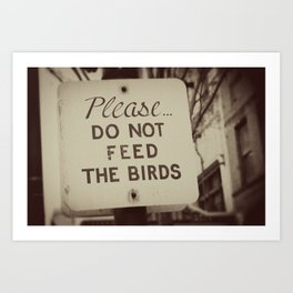 PLEASE do not feed the birds Art Print