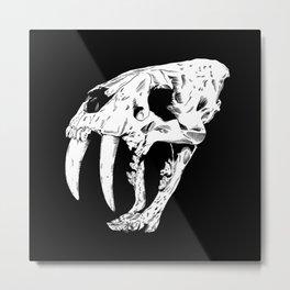 Sabertooth Tiger Skull Metal Print