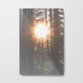 Through the woods Metal Print