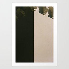 nuances de gris Art Print