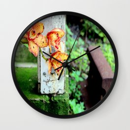 Elemental Exposure Wall Clock