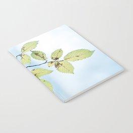 bight summer laves Notebook