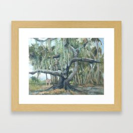 Myakka Spread Framed Art Print