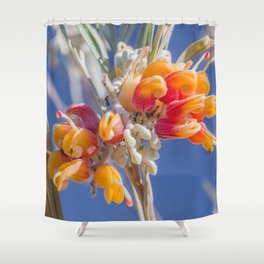 Mornington Grevillea Shower Curtain