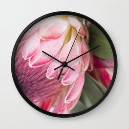 Fynbos Botanical Collection 2 Wall Clock