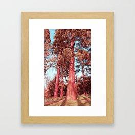 The Giants Framed Art Print