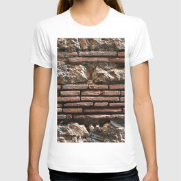 Ancient Mix-media Wall T-shirt
