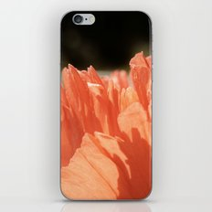 Orange Poppy iPhone & iPod Skin