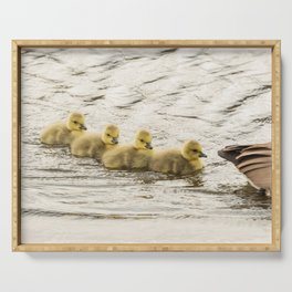 Wildlife family ducklings Serving Tray