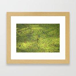 On the surface Framed Art Print