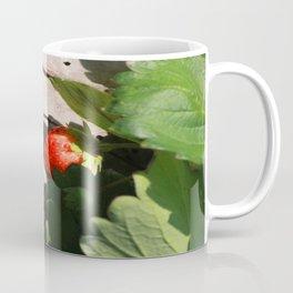 In Srawberry field Coffee Mug