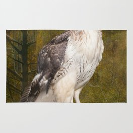 Red Tailed Hawk perched on a branch in the woodlands Rug