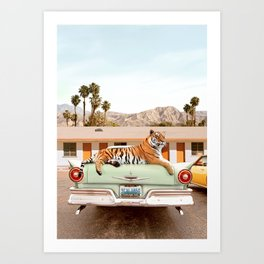 Tiger Motel Art Print