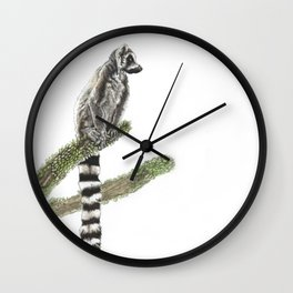 Ringtail lemur from the spiny forests of Madagascar Wall Clock