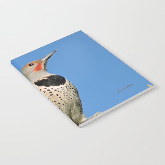 Northern Flicker Notebook