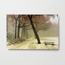 Cold Tranquility Metal Print