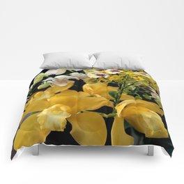 A Bit Stemmy Comforters