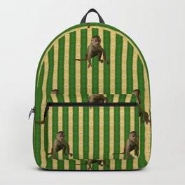 Capuchin Monkey Backpack