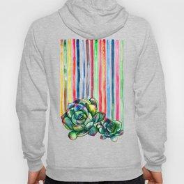 Rainbow Succulents - pencil & watercolor illustration Hoody